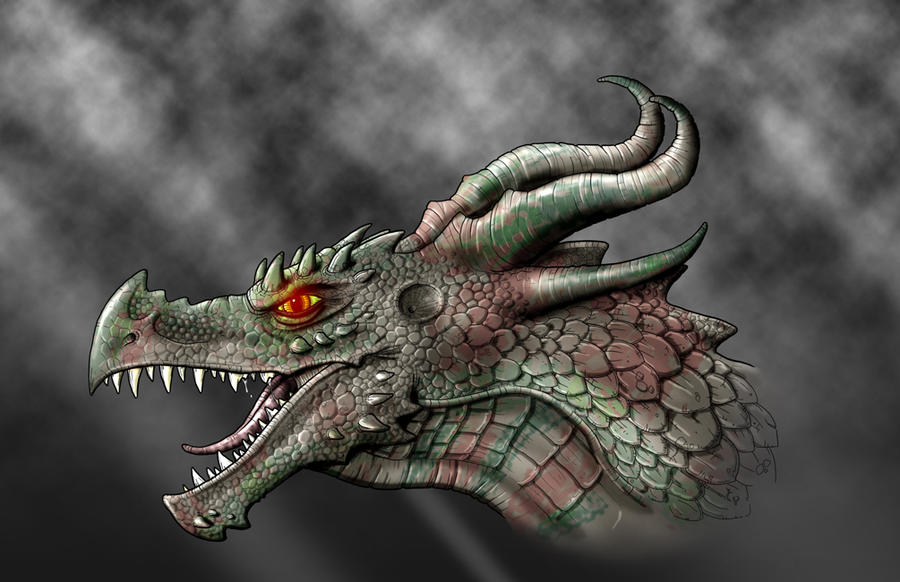 Drawings of dragon heads in