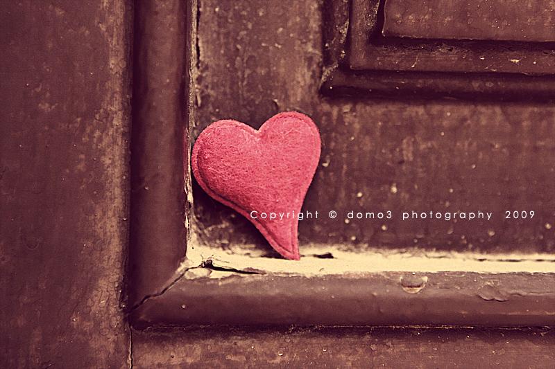 Love is a shelter by nono sukar