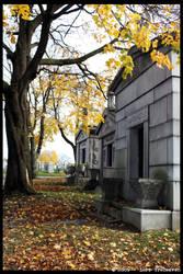 Second Calvary Cemetery 25 by Vamppy