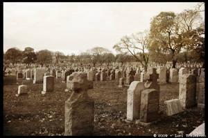 Second Calvary Cemetery 27
