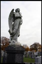 Second Calvary Cemetery 28