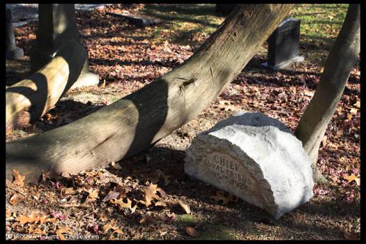 Hartsdale Pet Cemetery 2
