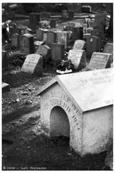 Hartsdale Pet Cemetery 4
