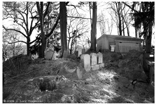 Hartsdale Pet Cemetery 5