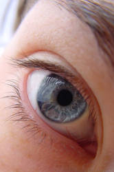 eye to eye by SaligiaStock