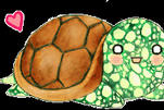 Commission: Soapet Turtle by ImoutoNoSachiko