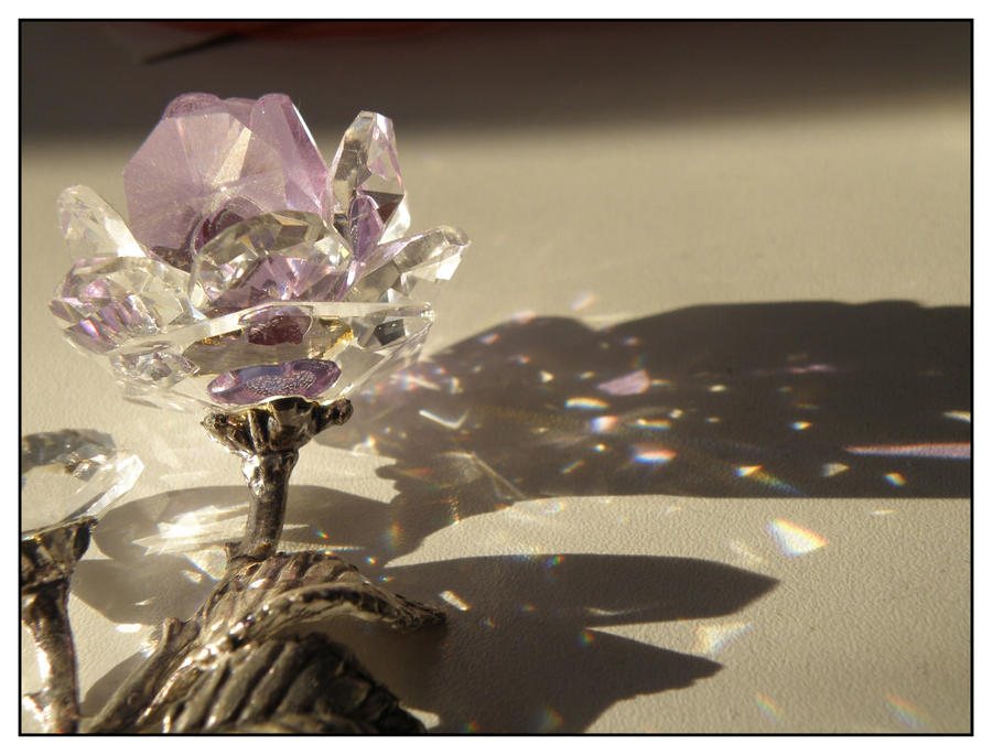 Crystal Rose I by robynx13