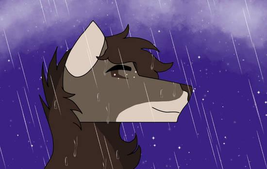 A peaceful rainy night