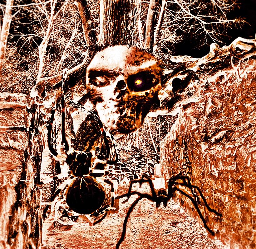 Nightmare Alley by SunshineBurnsz