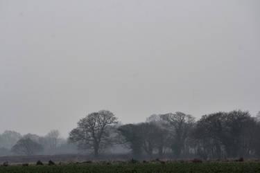 Mist by romancer