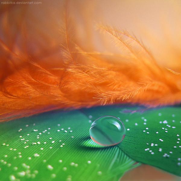 Veil by RaBBiTKa