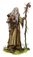 Elder Druid by caiomm