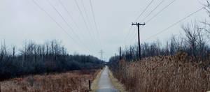 bleak trail I