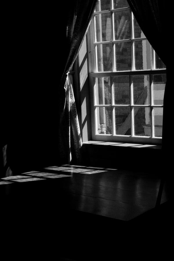 the mouse by the window by chirilas