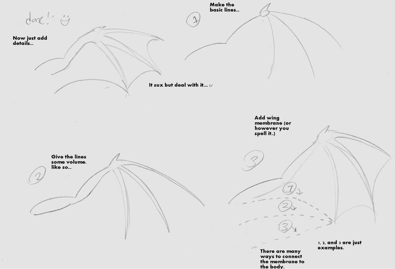 Simple Wing Drawing Basic How to Draw Bat Wings by