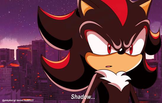 Shadow The Hedgehog 2005