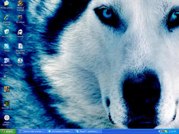 Blue Wolf by Luna-Z48
