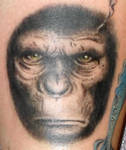 Ceasar, rise of the planet of the apes, tattoo