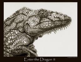 Enter the Dragon 11
