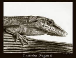 Enter the Dragon 13