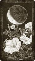 18 The Moon