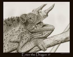Enter the Dragon15