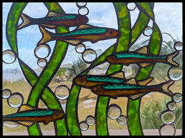 Anchovy Window