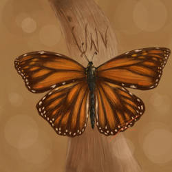 Commish: Butterfly Remembrance