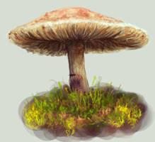 Mushroom by BlackDelphin