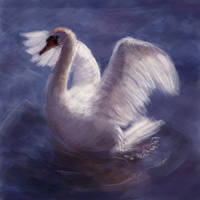 Swan Grace by BlackDelphin
