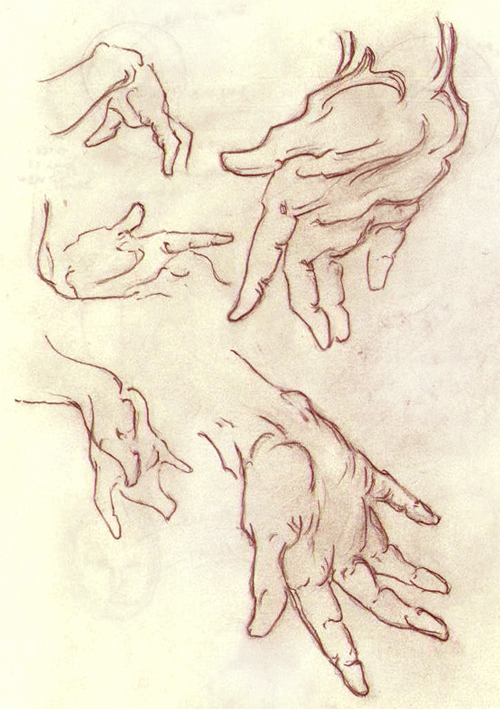 Hand Studies by BlackDelphin