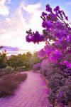 Beautiful Spain 02