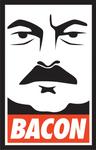 Ron Swanson Likes Bacon