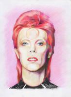 Ziggy Stardust by Shishkina