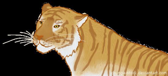 Tiger by Silfrvarg