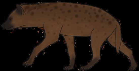 Spotted Hyena (Huntress) by Silfrvarg