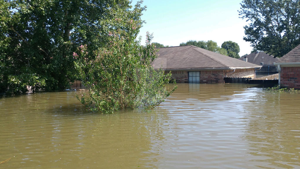 MY HOME AUGUST 2017 HARVEY FLOODING by soulman1964