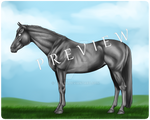 Grayscale Horse [50 Points]