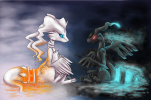 Reshiram and Zekrom by ECAMii