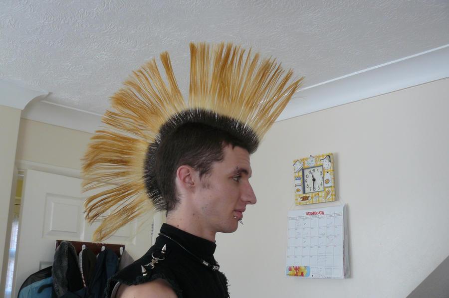 Fan Mohawk 2