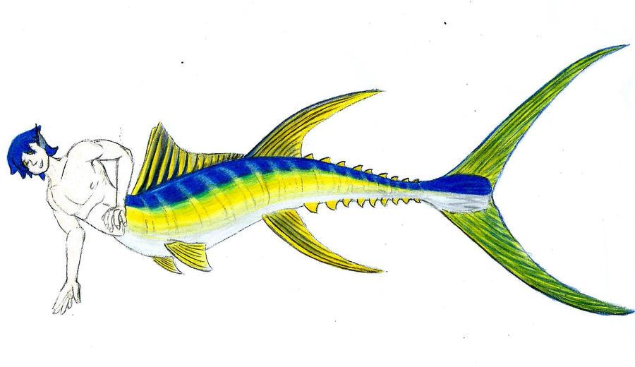 Yellowfin Tsuna by lizz-elric