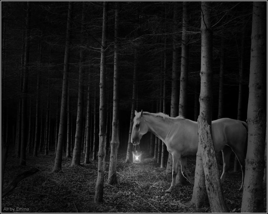 During Dark Times by EmmaVZ