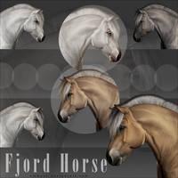 Ribbon Horse - Fjord Horse