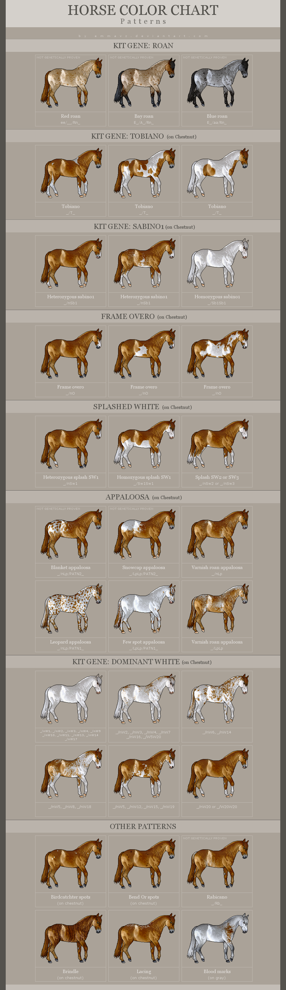 Horse color chart patterns updated by emmavz on deviantart horse color chart patterns updated by emmavz nvjuhfo Choice Image