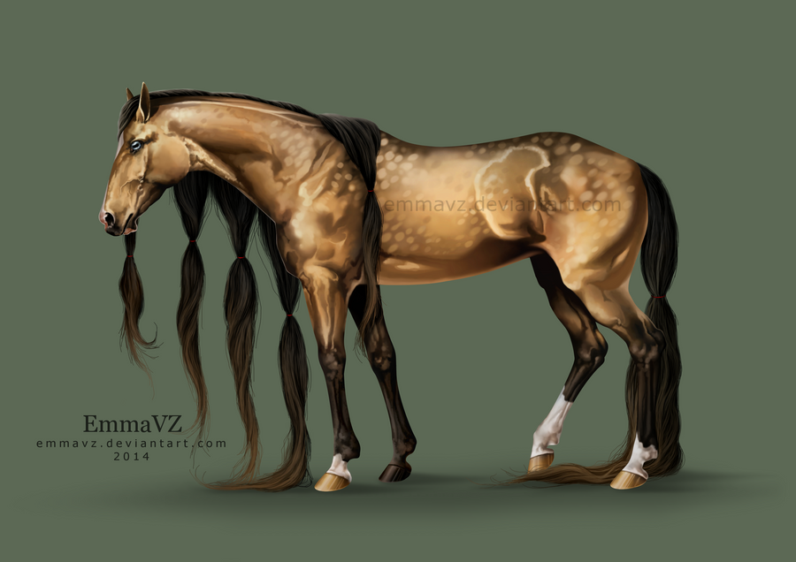 Buckskin Beauty by EmmaVZ