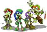 Ninja Turtles (Sonic Character Style) by MlpTmntDisneyKauane