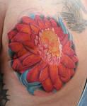 Skull lotus thingy