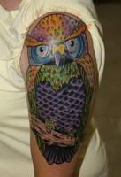 OWL coverup by ragdollgrl13
