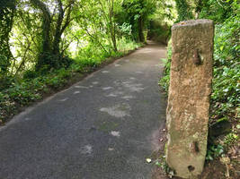 Lane Fence Post by delboy1066