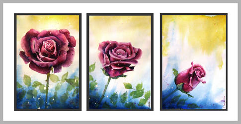 Rosa Triptych